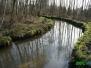 Rzeka Radomka - badania hydromorfologiczne i inwentaryzacja