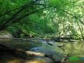 10 Rzeka Drawa
