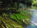 14 Rzeka Drawa