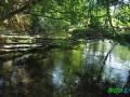 16 Rzeka Drawa