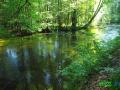 3 Rzeka Drawa