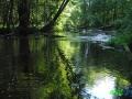 4 Rzeka Drawa