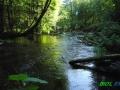 5 Rzeka Drawa