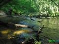 8 Rzeka Drawa