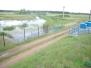 Rzeka Łasica - badania hydromorfologiczne i hydrobiologiczne