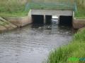 13 Rzeka Łasica.JPG