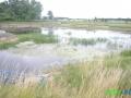 5 Rzeka Łasica.JPG