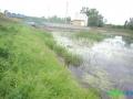 8 Rzeka Łasica.JPG
