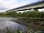Starorzecze rzeki Warty - badania makrofitów